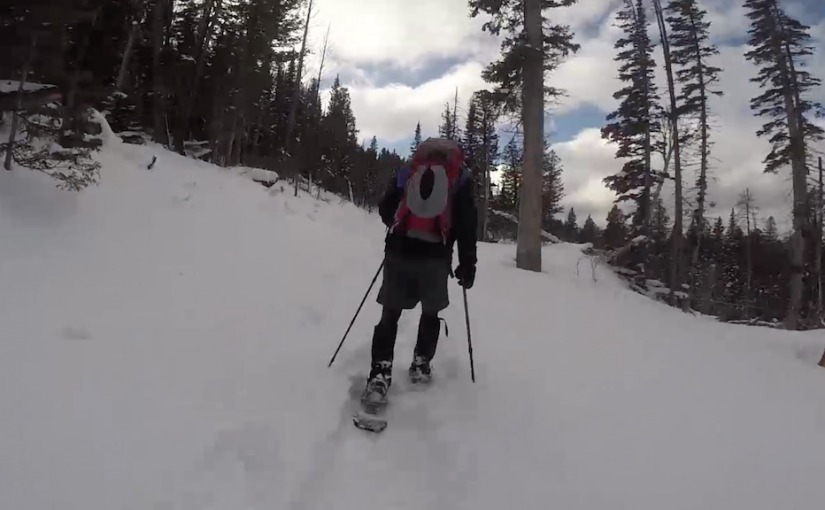 6 Hours of Snowshoeing